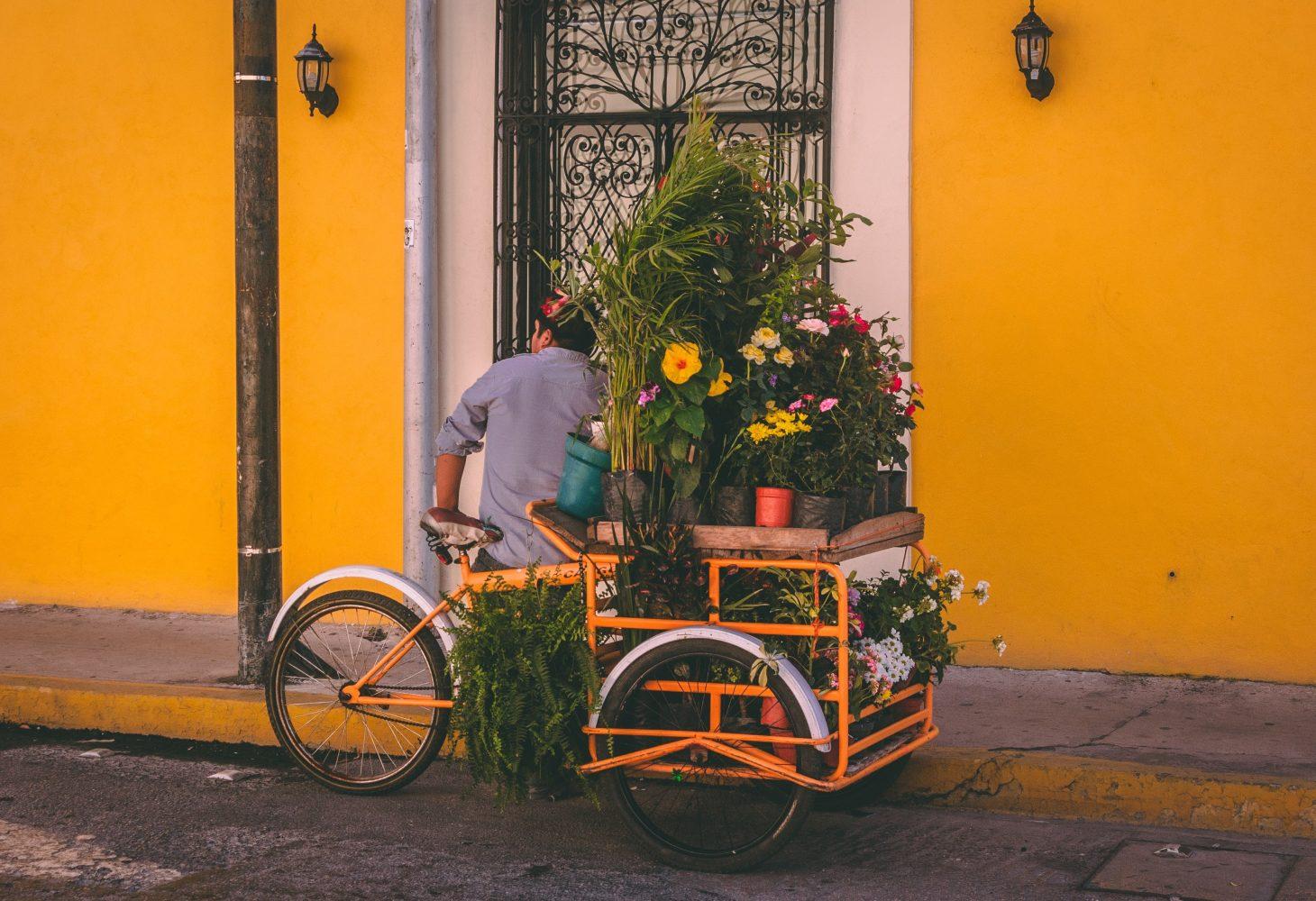 Blog over Cadeau-ideeën voor fietsen in Elektrische fietsen